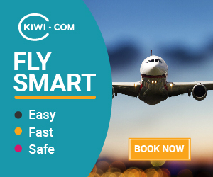 kiwi fly